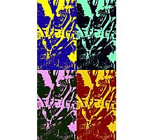 Twisted Daffodils (Pop Art) Photographic Print