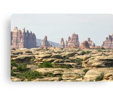 Canyonlands 30 Canvas Print