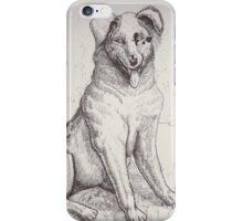 Australian Shepherd Dog iPhone Case/Skin