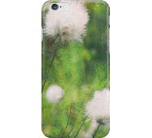 Colours of Springtime iPhone Case/Skin