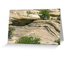 Canyonlands 39 Greeting Card