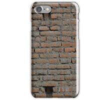 Old Adobe Brick Wall iPhone Case/Skin