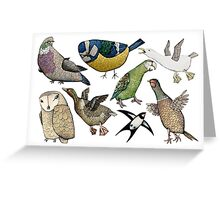 The Birds! Greeting Card