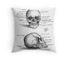 Anatomy of a Human Skull Throw Pillow