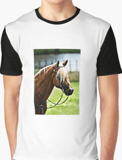 Horse View 2 Graphic T-Shirt