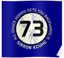 Sheldon Cooper 73 - Distressed Vanilla Cream Circle Chuck Norris Text Poster
