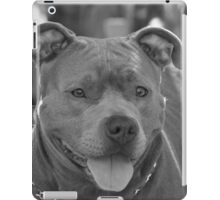Pitbull in black and white iPad Case/Skin