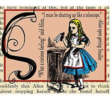 Alice in Wonderland and Through the Looking Glass Alphabet S Photographic Print