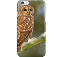 Owl Time iPhone Case/Skin