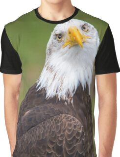 Closeup of an American Bald Eagle in Ecuador Graphic T-Shirt
