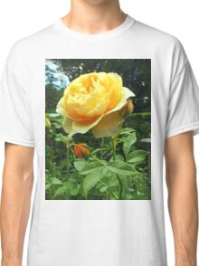 Yellow Rose and Buds Classic T-Shirt