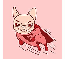 Super Frenchie has arrived for your rescue Photographic Print