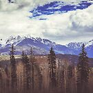 Colorado Mountains by Jonicool