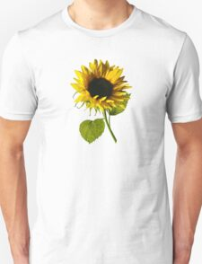 Sunflower Shadow and Light Unisex T-Shirt