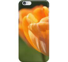 Tulips in the Sun iPhone Case/Skin