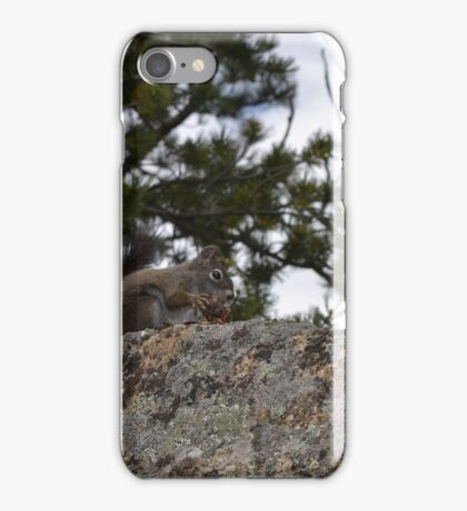 Springtime feast iPhone Case/Skin