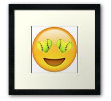 Love Softball Framed Print