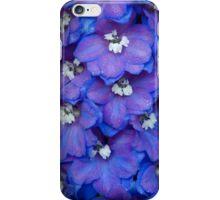 Magic Fountain - Blue Delphinium iPhone Case/Skin