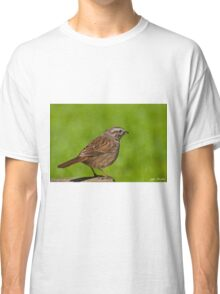 Song Sparrow on a Log Classic T-Shirt