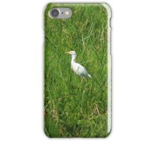 Alert Cattle Egret in a Pasture iPhone Case/Skin