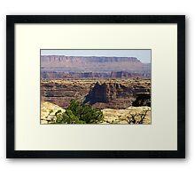 Canyonlands 80 Framed Print