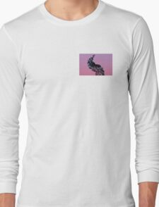 Flume, Old and New Long Sleeve T-Shirt