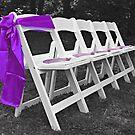 Purple Sash by Scott Mitchell