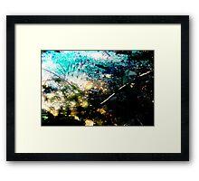 Thorn Fall Framed Print