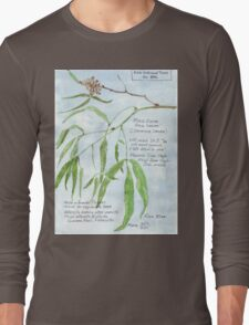 Black Karee leaves - Rhus lancea - Botanical Long Sleeve T-Shirt