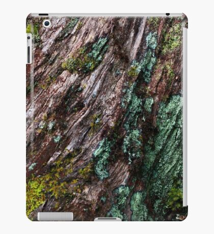 Nature's Patina iPad Case/Skin