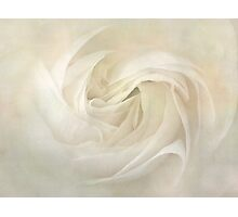 Dreamy petal swirls Photographic Print