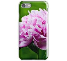 Showy Pink Pedals iPhone Case/Skin