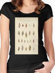 Thesaurus conchyliorum Monographs of genera of shells George Brettingham Sowerby 1887 V1-V5 479 Women's Fitted Scoop T-Shirt