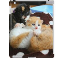 Litter of kittens iPad Case/Skin