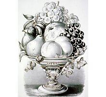 Fruit vase - 1870 - Currier & Ives Photographic Print