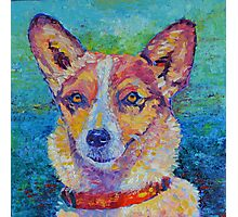 Dog portrait dog painting Photographic Print