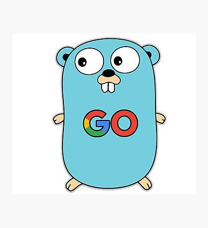 google go programming language color Photographic Print
