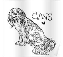 Sketchy Cav Poster