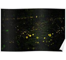 Dream of Fireflies Poster