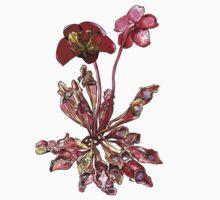 Pitcher Plant, Sarracenia purpurea Kids Tee