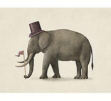 Elephant Day  Photographic Print