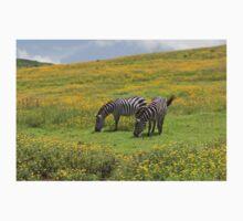 Grant's Zebras (Equus quagga boehmi) Baby Tee