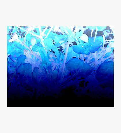 Living in Blue - Abstract Watercolor Blend Photographic Print