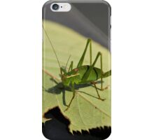 Anyone for Cricket iPhone Case/Skin