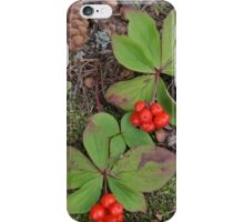 Holiday Cheer iPhone Case/Skin