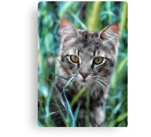 Cat in the Grass Canvas Print