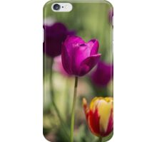Study of Tulips iPhone Case/Skin