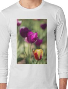 Study of Tulips Long Sleeve T-Shirt