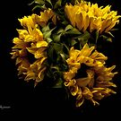 Sunflowers! by Susan Vinson