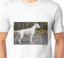 Assuming 'The Stance'... Unisex T-Shirt